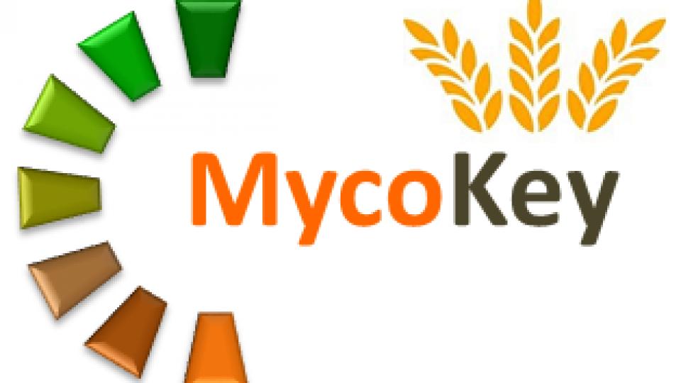 Mycokey_ISPA
