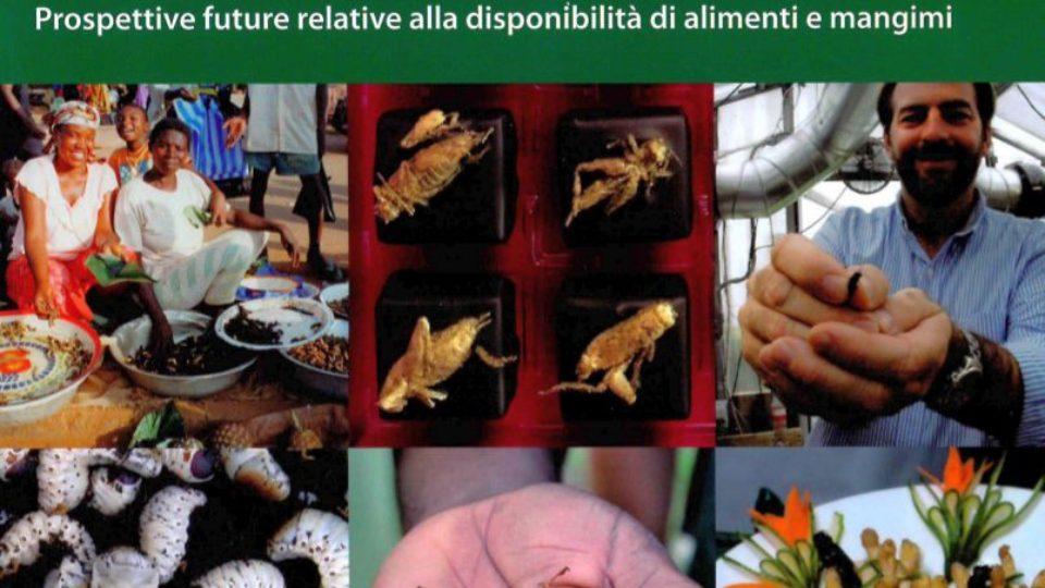 COPERTINA LIBRO INSETTI_banner